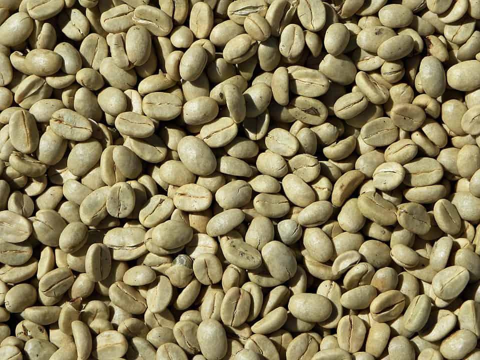 grain de café vert bon pour la santé